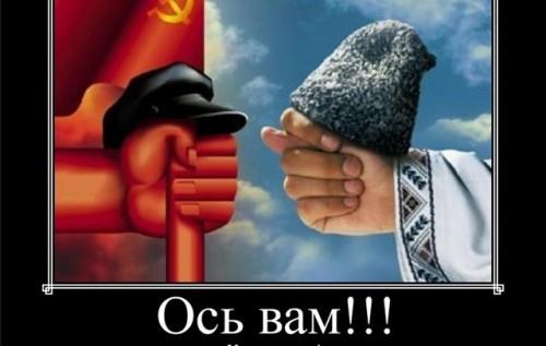 На российской границе задержаны злоумышленники, перегонявшие краденые автомобили по поддельным документам - Цензор.НЕТ 3120