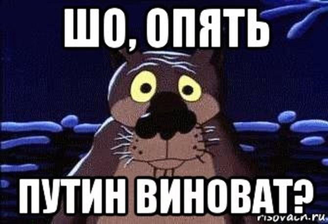 На хабарі 68,7 тисяч затримано мера міста Сколе Москаля, - Луценко - Цензор.НЕТ 8503